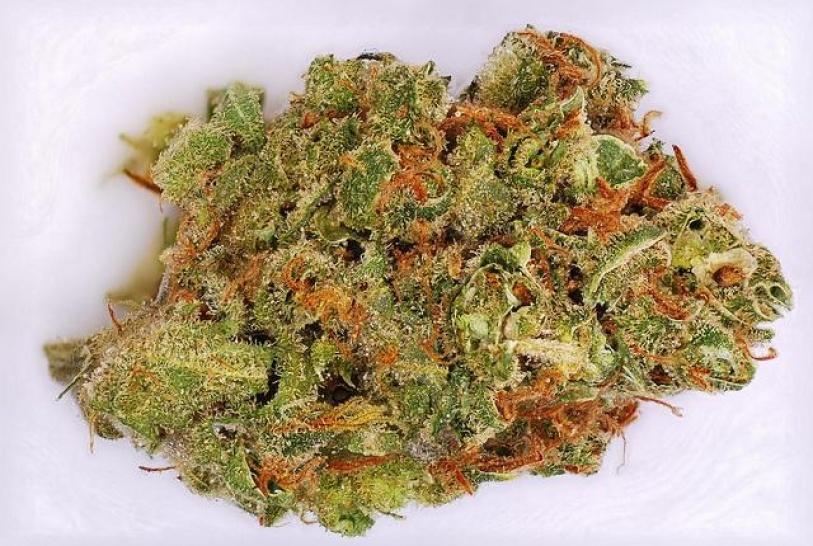 boax hemp strain